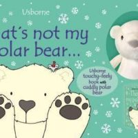 Usborne That's Not My Polar Bear…book and toy (Age 6 months +)