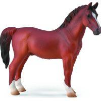 Hackney Stallion Chestnut